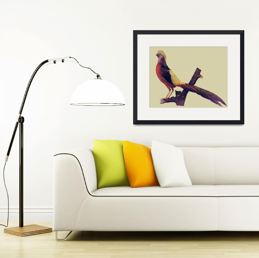 """""""Golden Pheasant&quot  (2010) by birthdaygifts"""