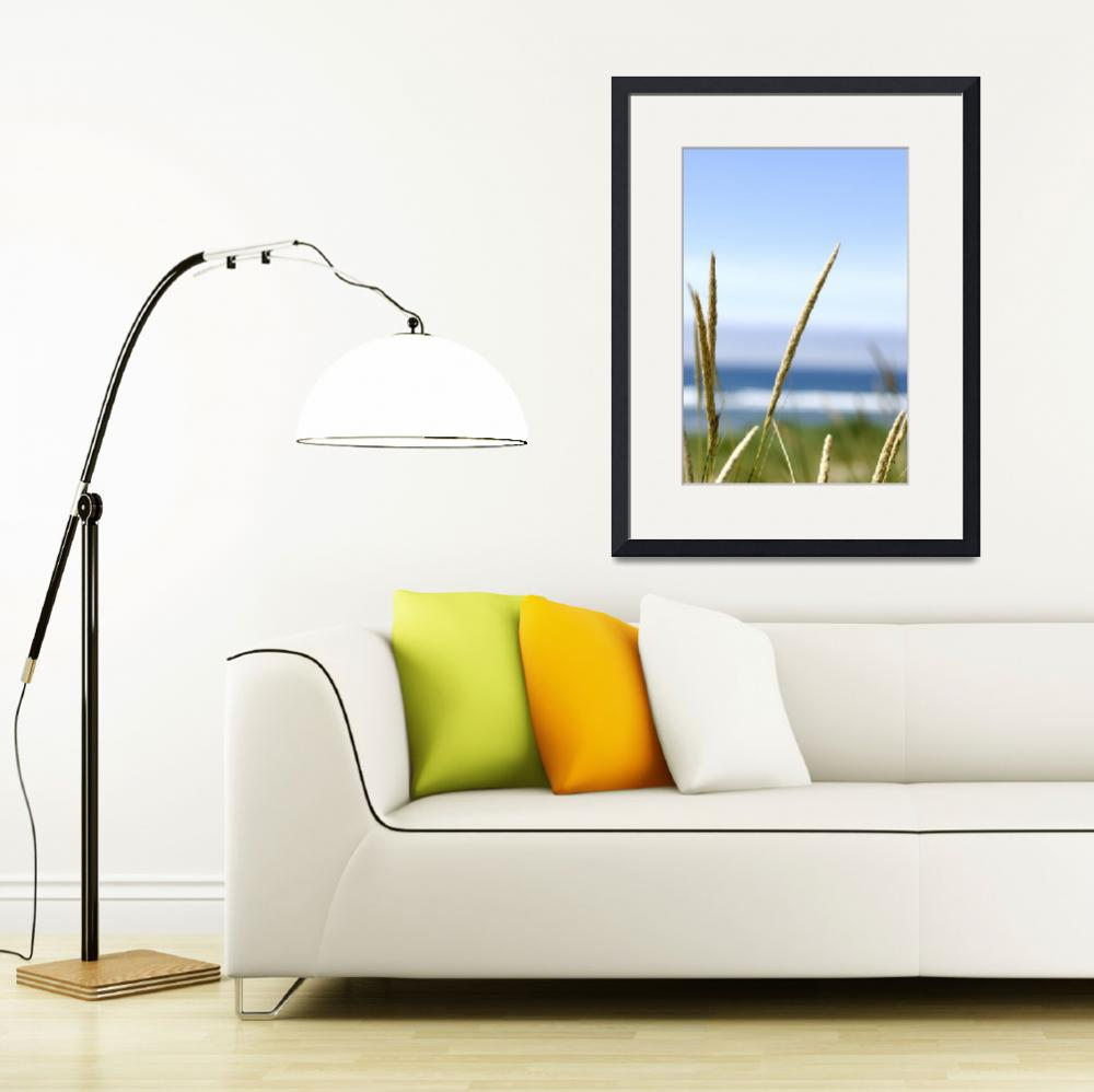 """Beach Grass 256&quot  (2010) by CazadoraStudio"