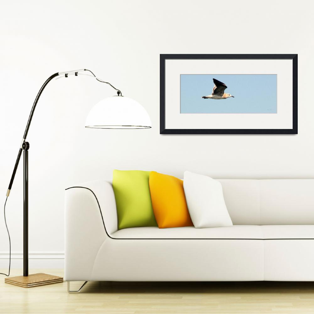 """""""Seagull&quot  (2010) by GinetteCallaway"""
