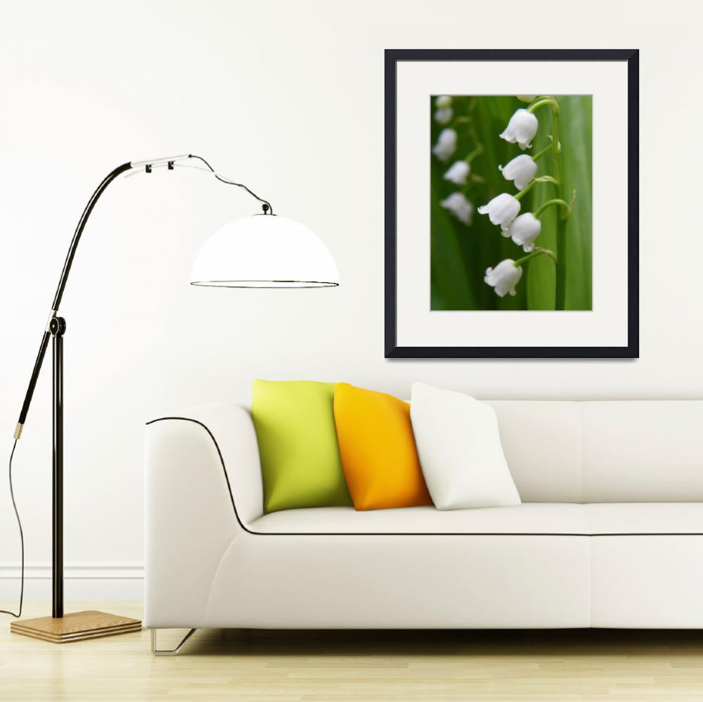 """Lily Of The Valley Convallaria majalis&quot  (2013) by vpicks"