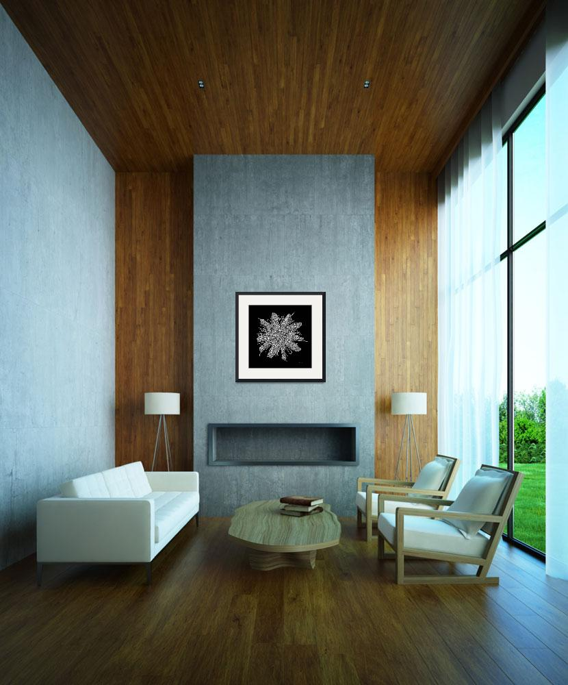 """""""Expressive Passion Flower in Black 50674K3&quot  (2018) by Ricardos"""