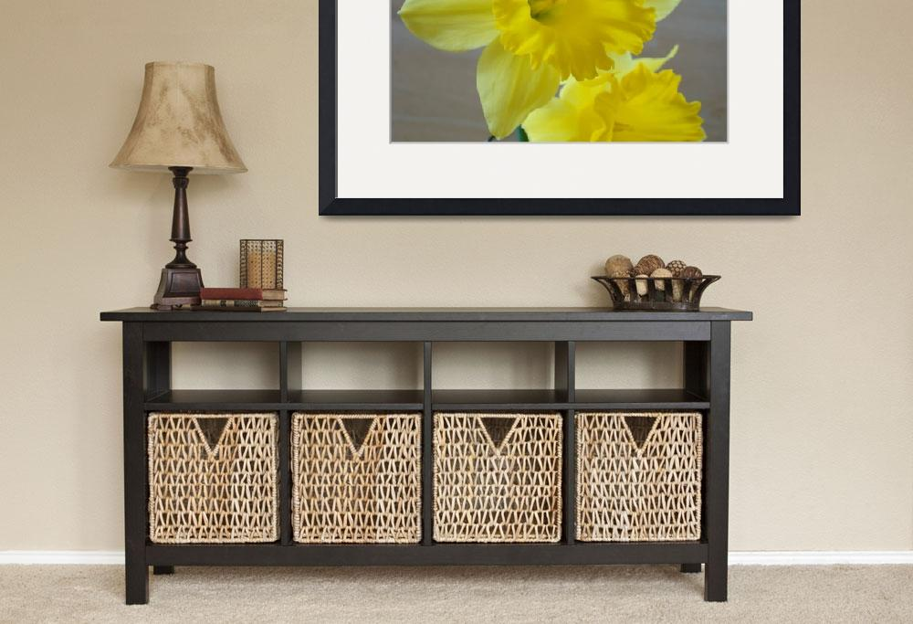 """""""Spring Daffodils Daffodil Flowers Art Prints&quot  (2009) by BasleeTroutman"""