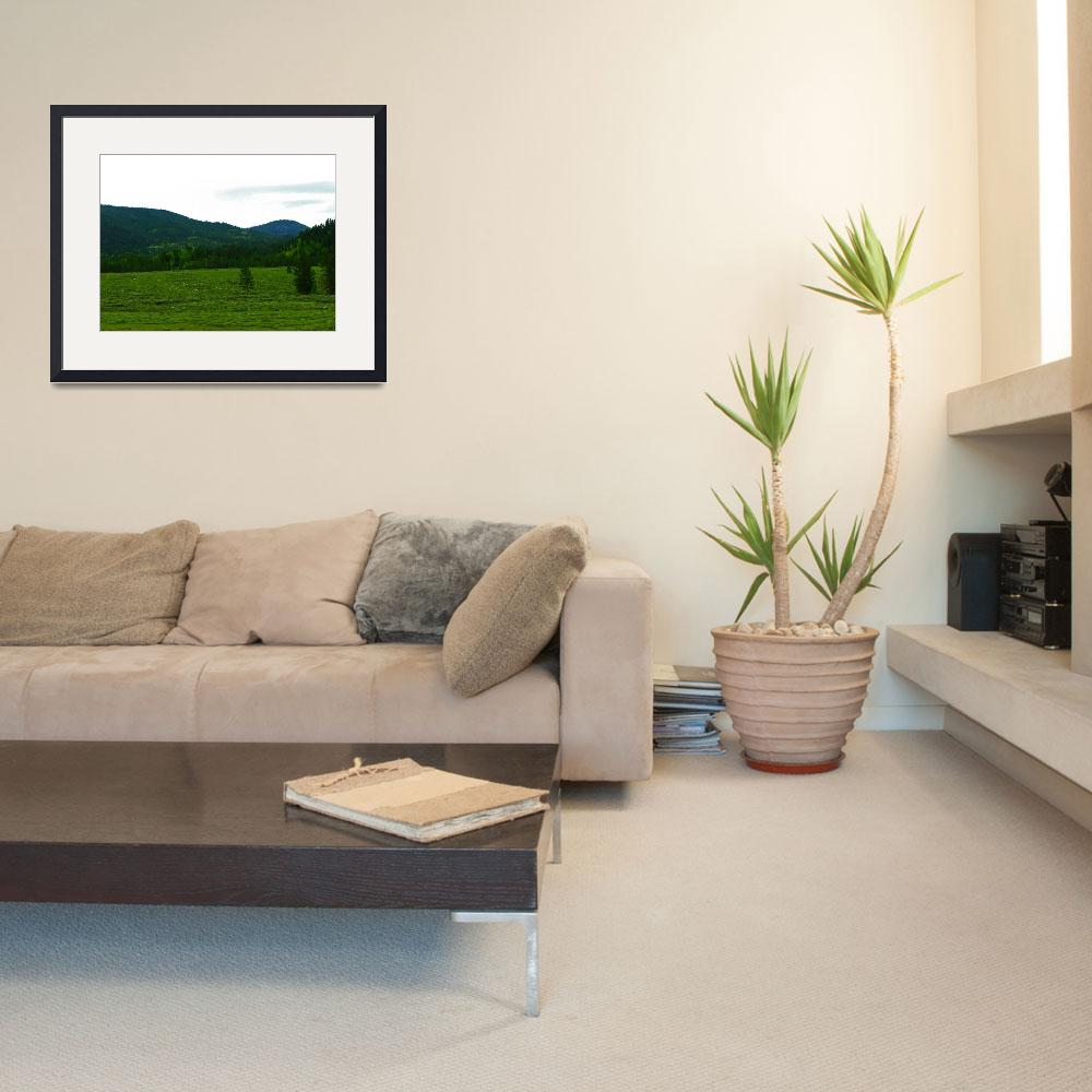 """""""Small Valley&quot  (2006) by buyphotoart"""
