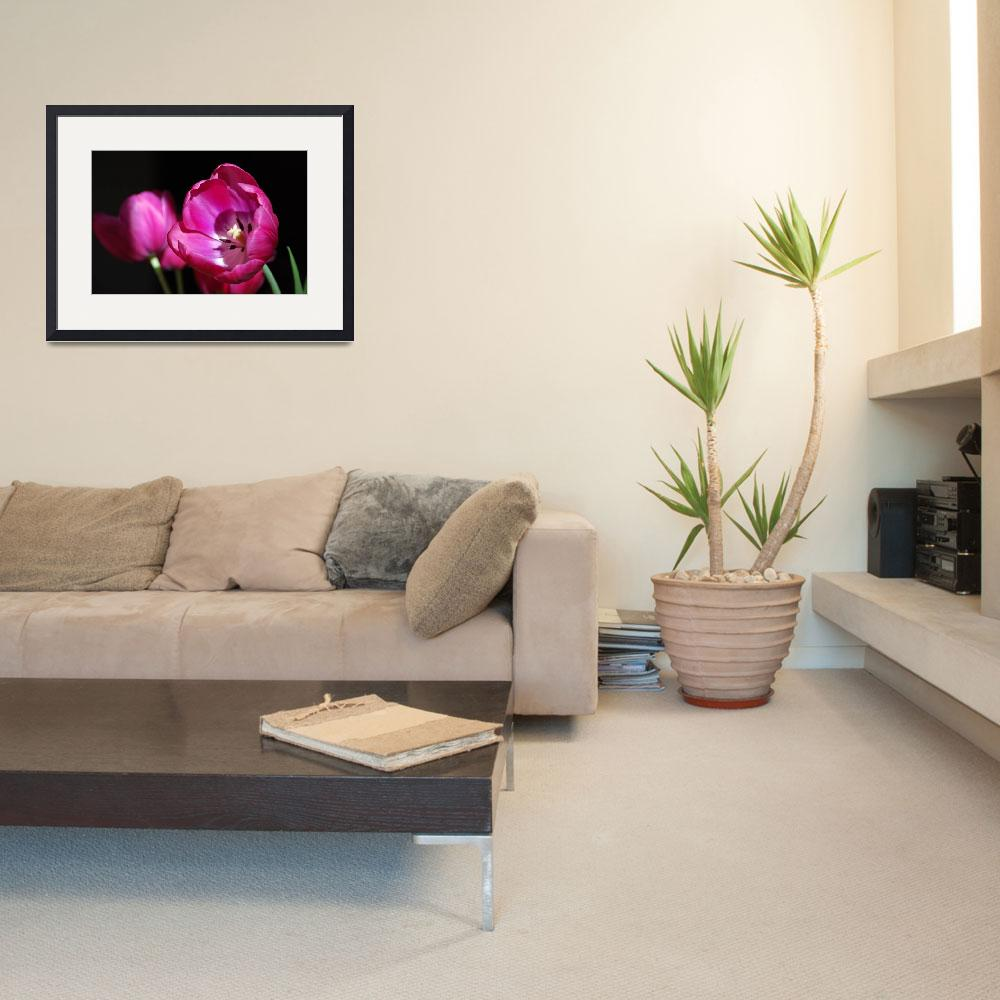 """""""Hot Pink&quot  (2008) by Devens-Fitz"""