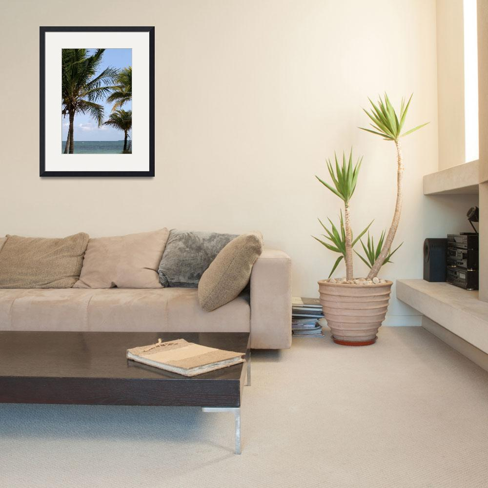 """""""Atlantic Palm&quot  (2005) by MNTPhoto"""