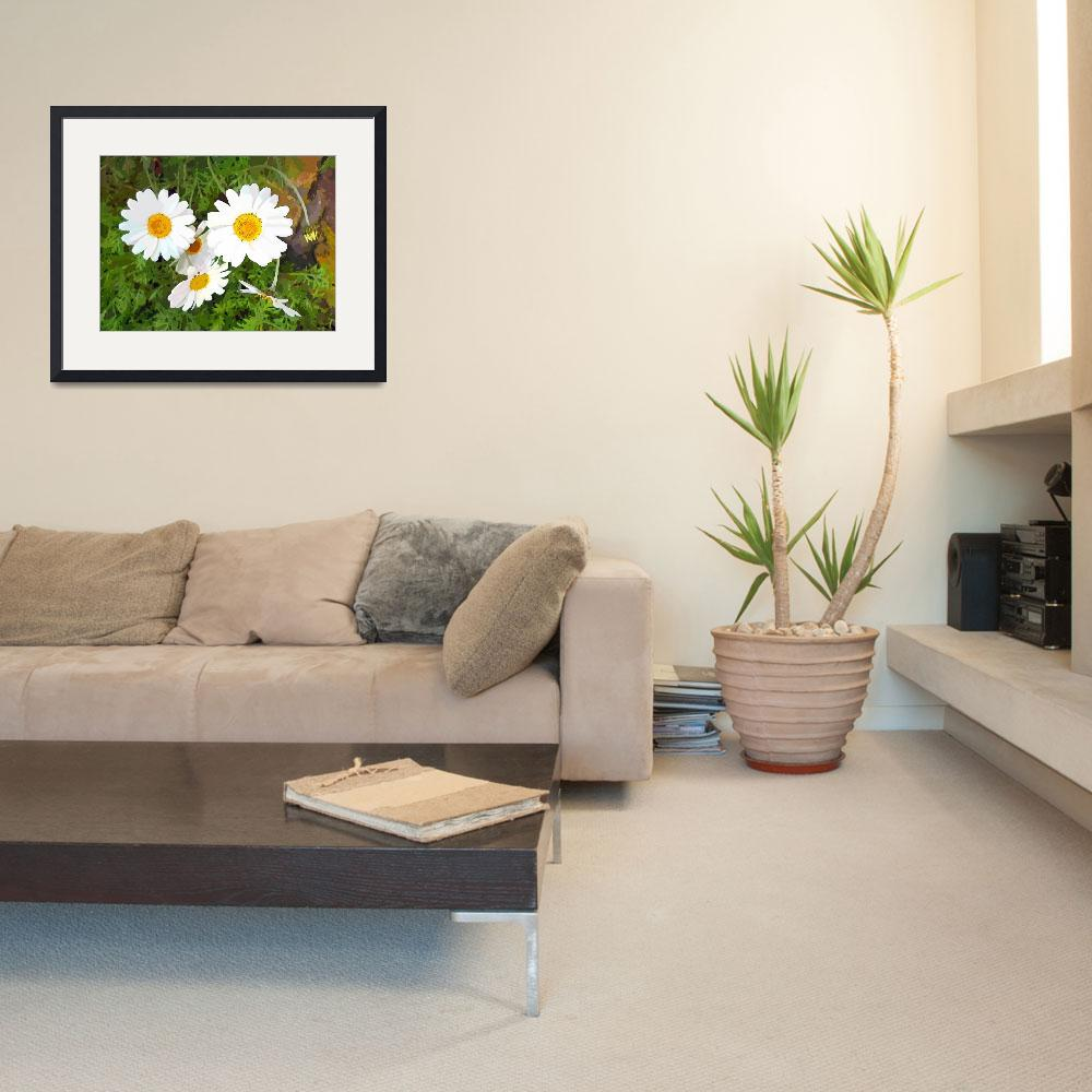"""""""Daisies""""  (2012) by Scolas"""
