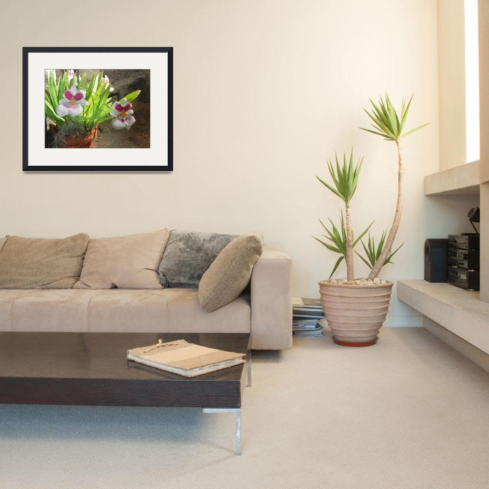 """""""potted orchids oil""""  by lizmix"""