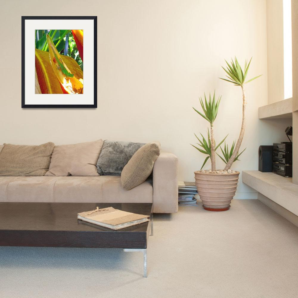 """""""Gecko on Heliconia""""  (2012) by joeyartist"""