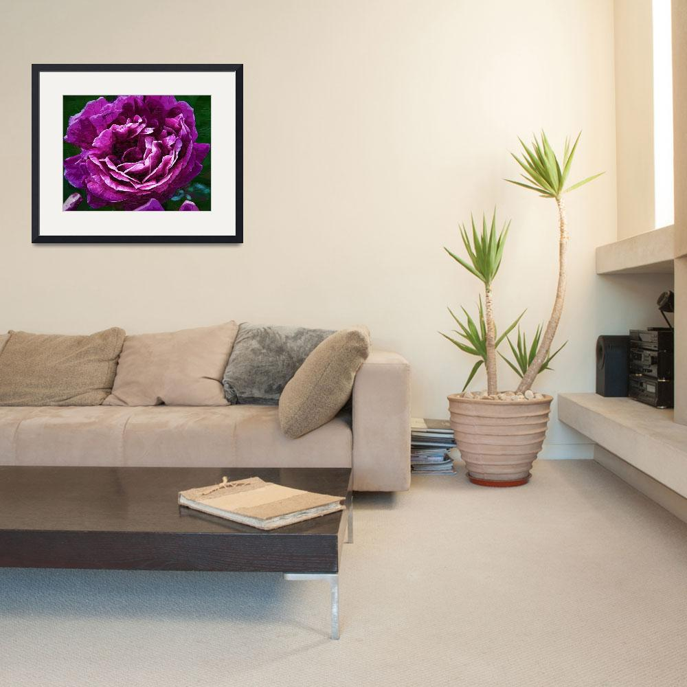 """""""Bold Purple Rose Bloom""""  (2016) by Kirtdtisdale"""