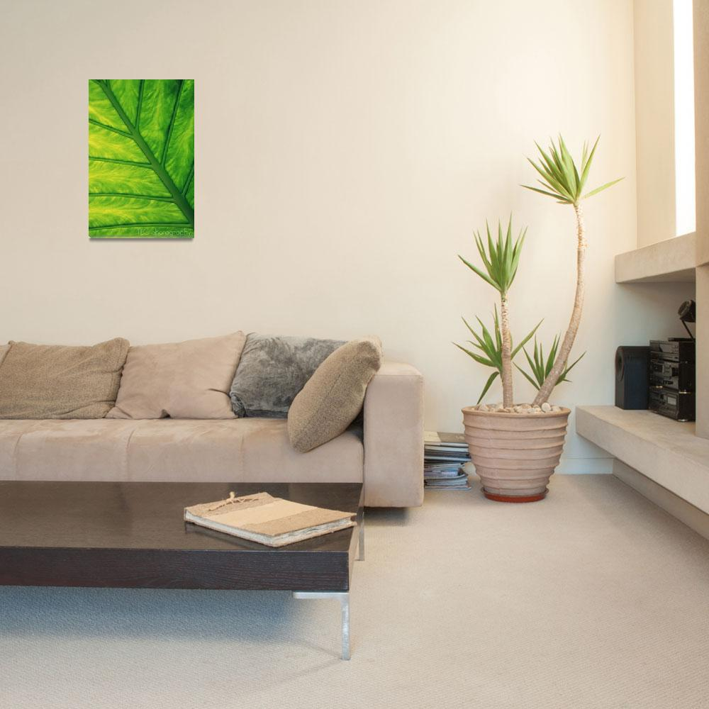 """leaf pattern&quot  by taracarollo"
