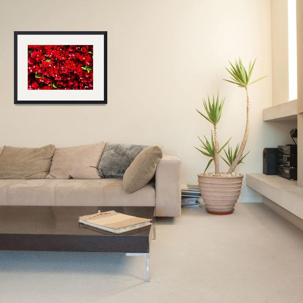 """""""Great Red Wall&quot  (2008) by rmccord"""