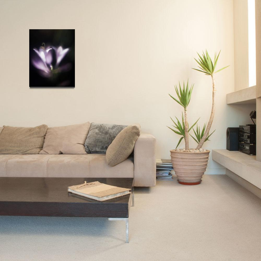 """""""hostas soft and dreamy photographic painting&quot  (2006) by jnanian"""