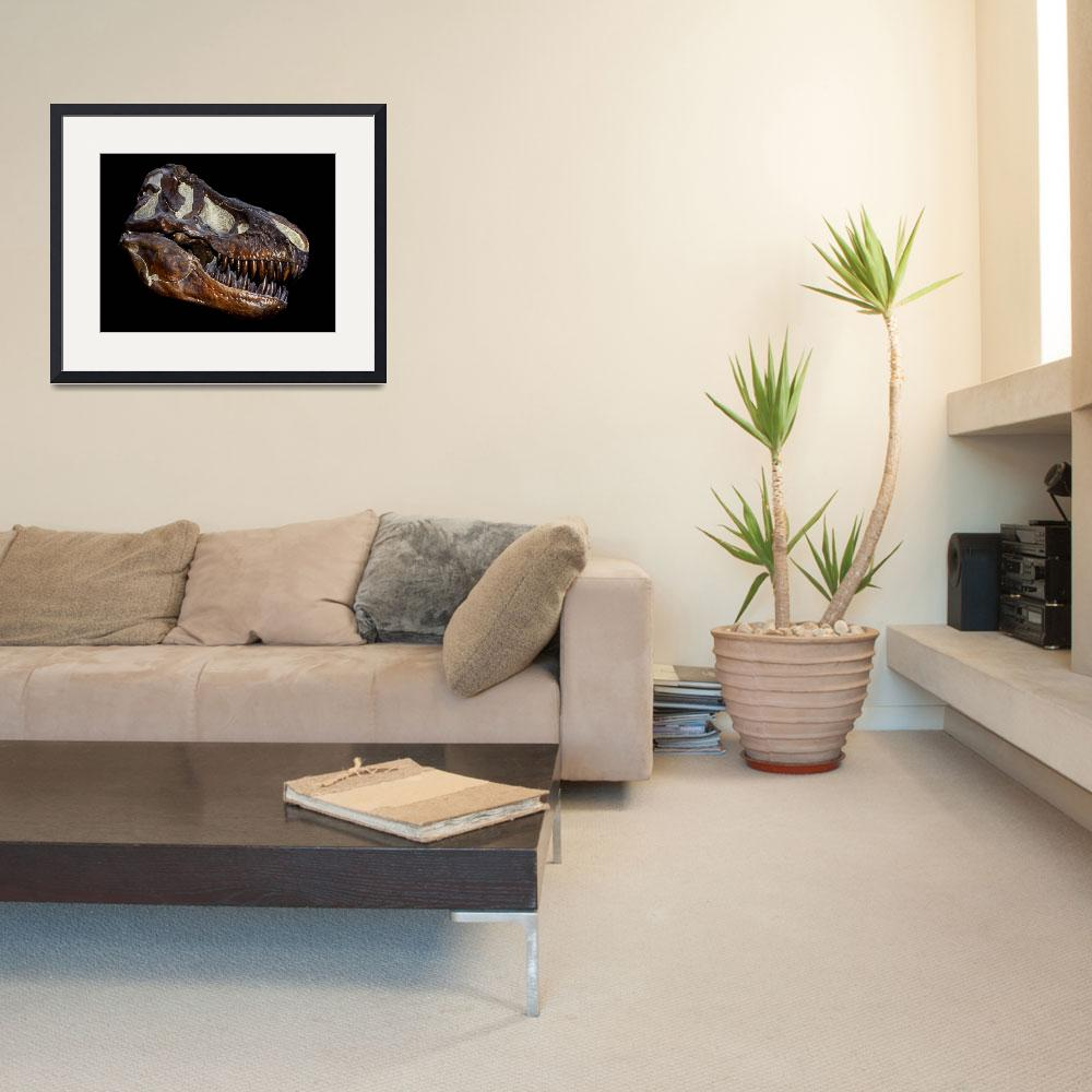 """""""A genuine fossilized skull of a T. Rex""""  by stocktrekimages"""