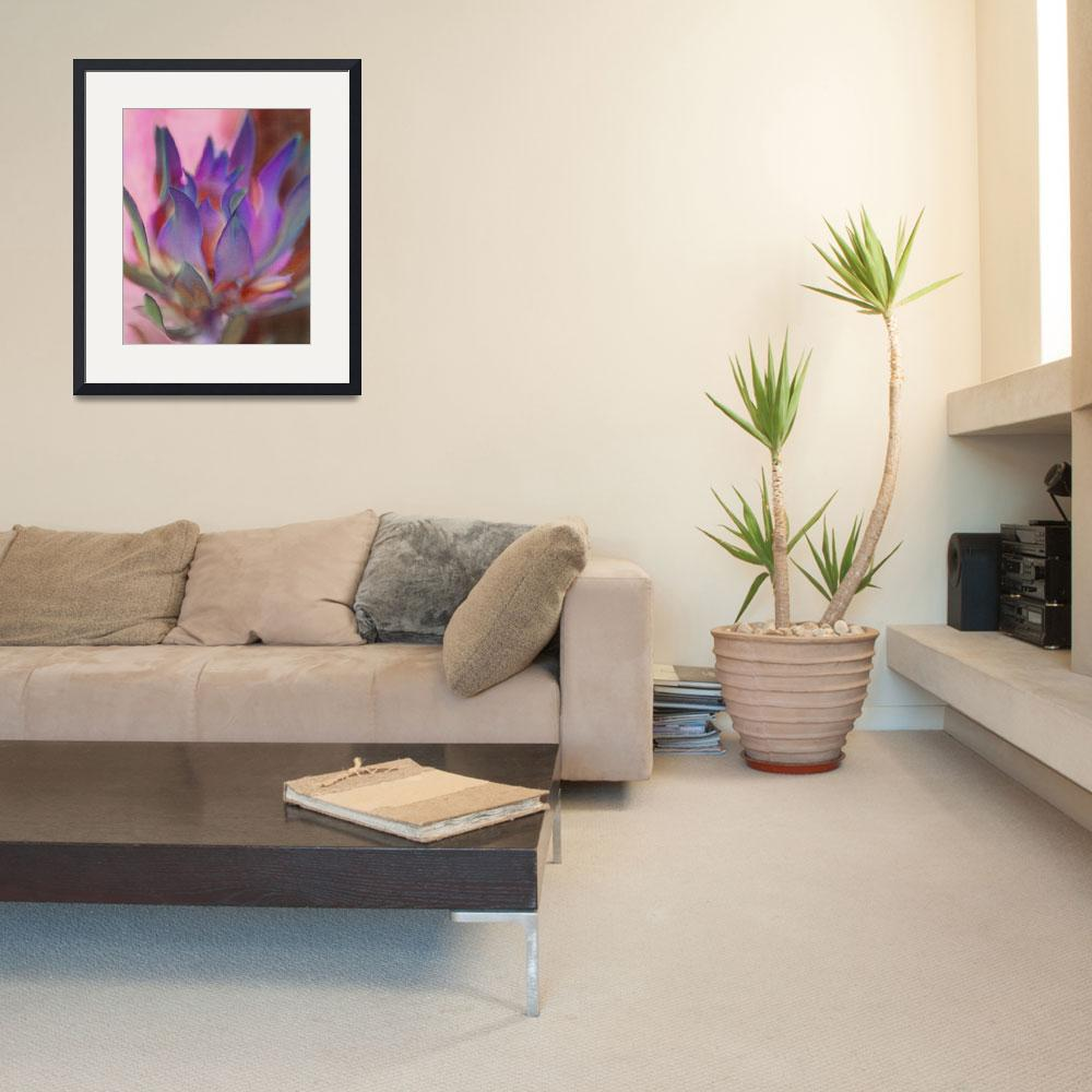 """Flaming Protea in Pink and Purple&quot  (2011) by SherylKaras"