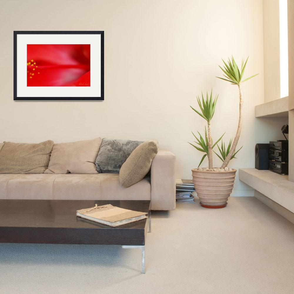 """""""Hibiscus Red 829&quot  (2008) by bybelinda"""
