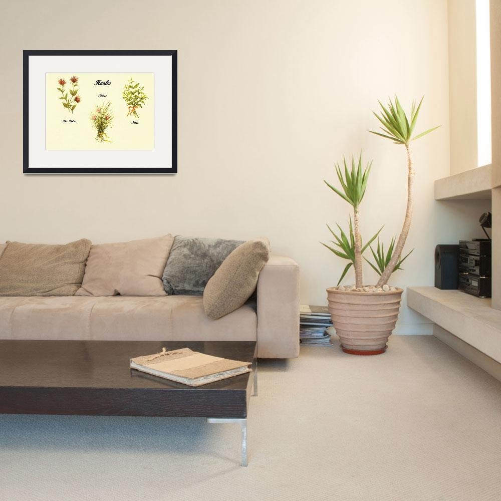"""""""3 Herb Paintings&quot  (2011) by vigliotti"""