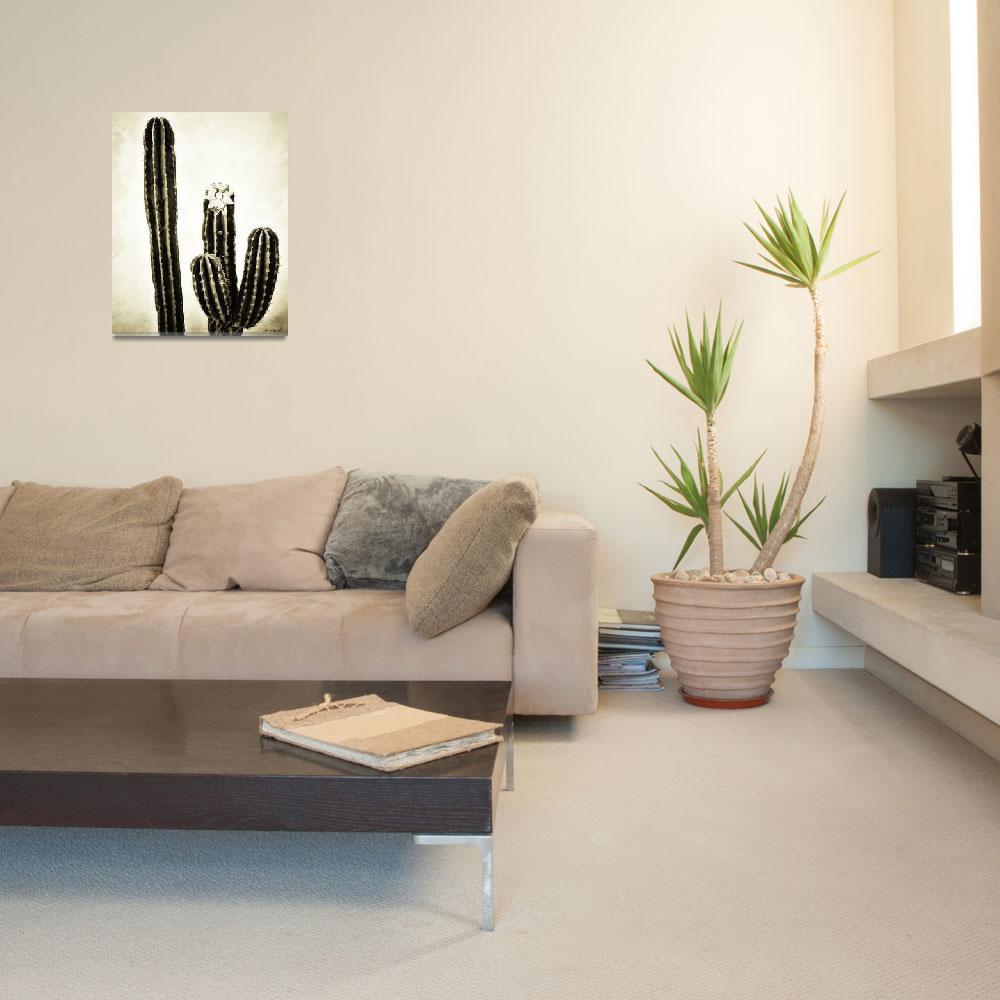 """""""Cactus #3""""  (2009) by johncorney"""