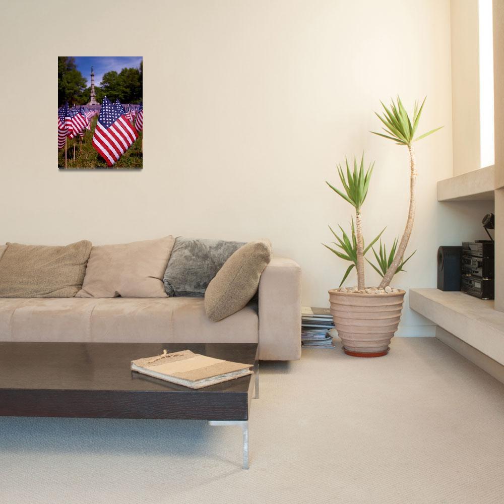 """Memorial Day Flag Garden""  (2011) by RonaBlack"