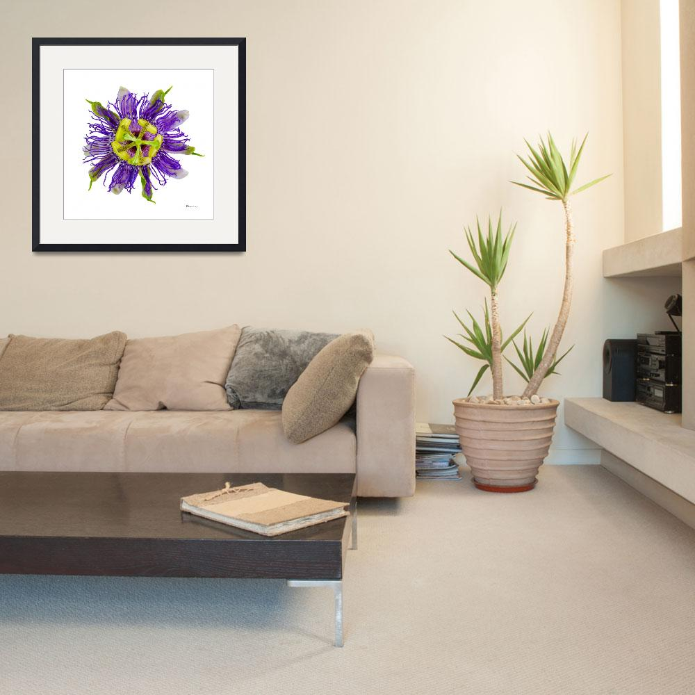 """""""Yellow Green and Violet Passion Flower 59674A""""  (2018) by Ricardos"""