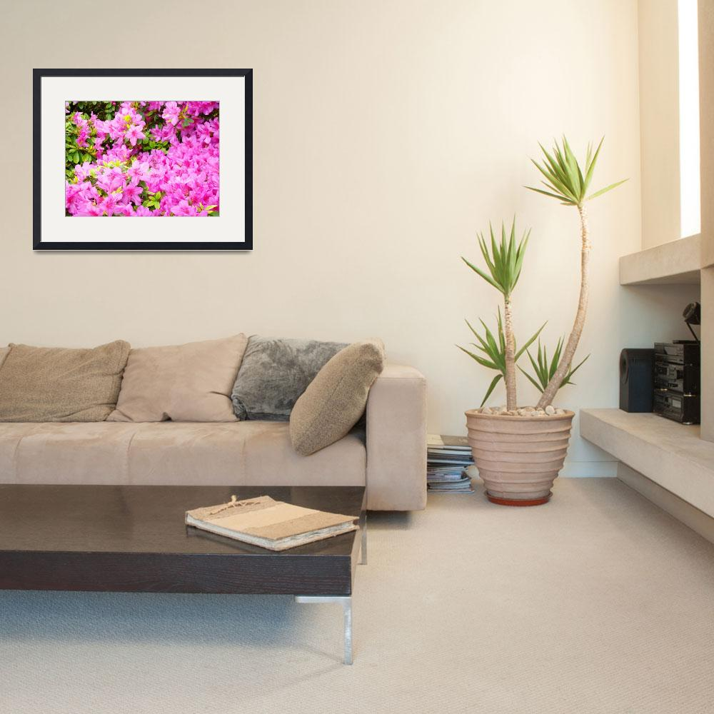 """Christmas Gift Gallery PINK AZALEAS Art Gifts""  (2009) by BasleeTroutman"