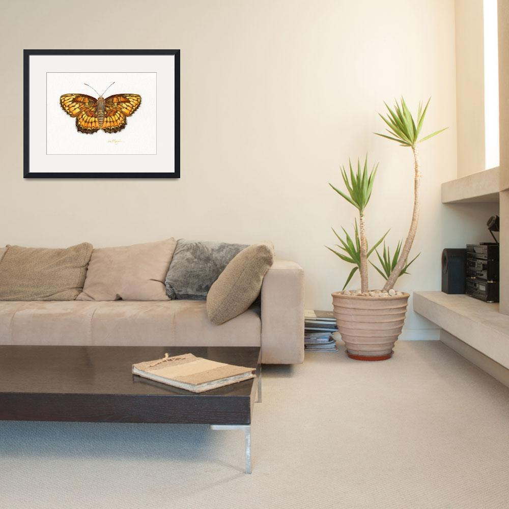"""Theona Checkerspot""  (2008) by LisaMclaughlin"