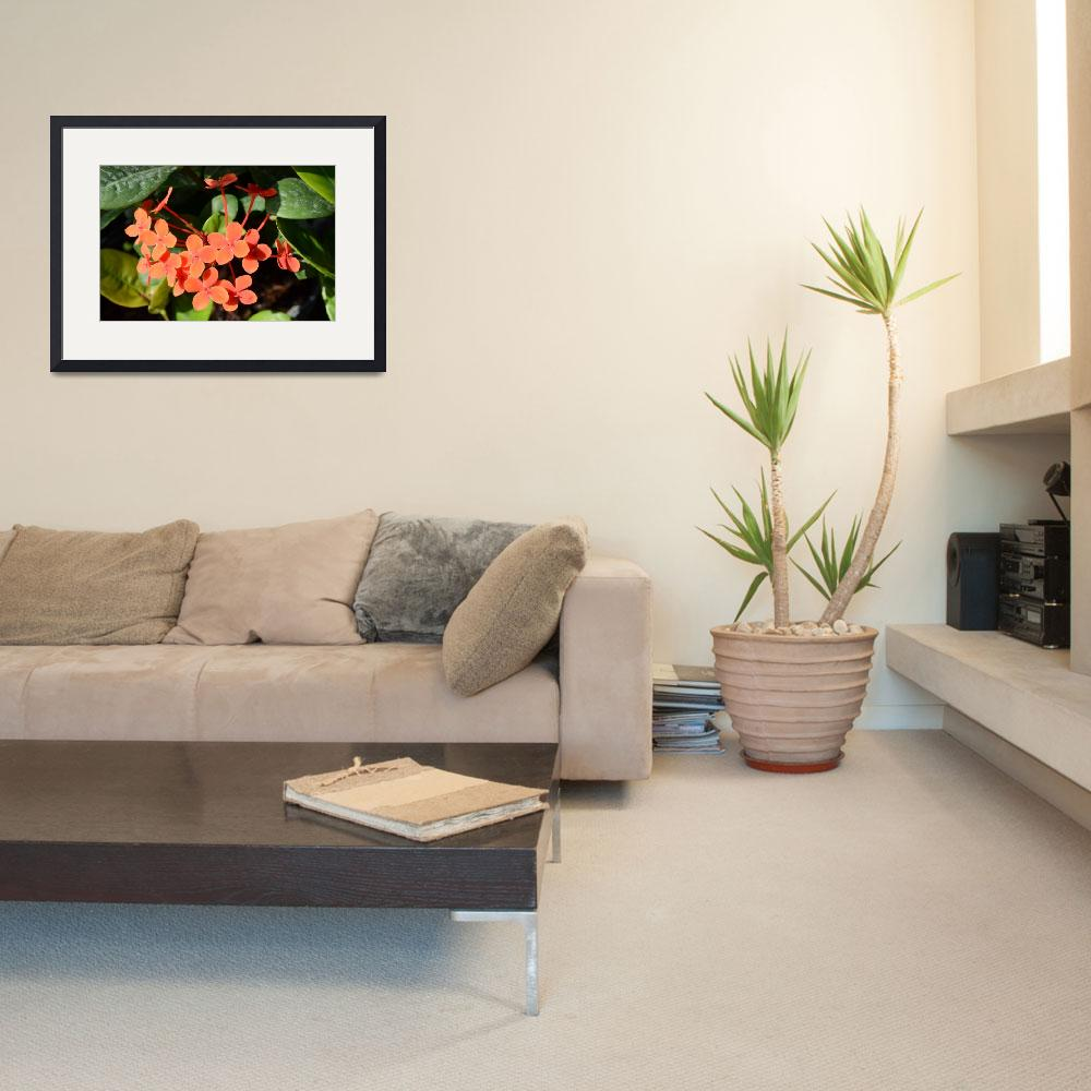 """""""Orange Multiple Sectioned Blooming Flower&quot  (2014) by jdlord"""