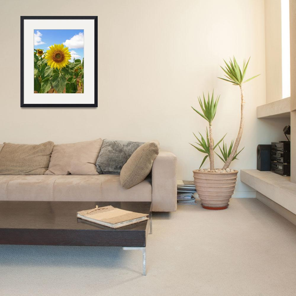 """""""Summer Sunflower&quot  (2007) by daisyjoan"""