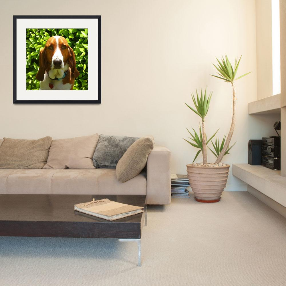 """Classsic Bassethound&quot  (2009) by AmyVangsgard"