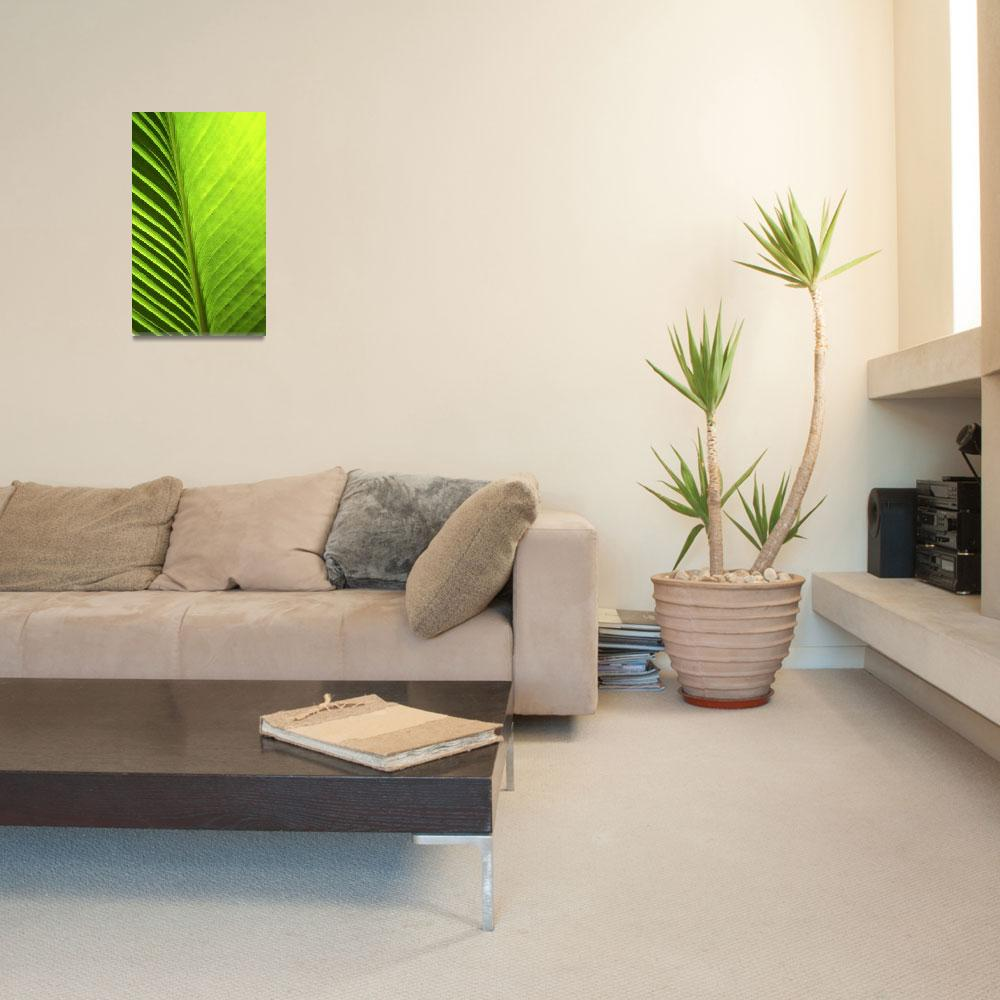 """Palm 08aV Green Lime Yellow""  (2010) by Ricardos"