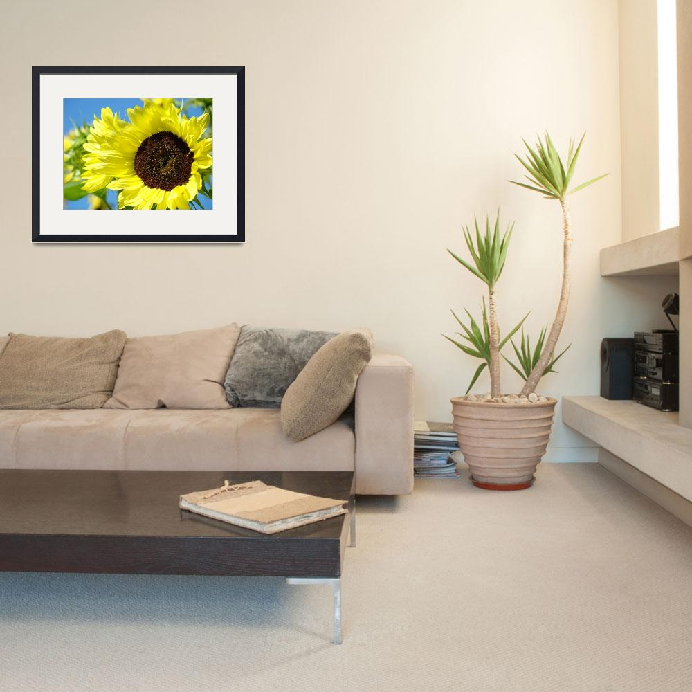 """Sunflowers Art Prints Summer Garden Botanical&quot  (2009) by BasleeTroutman"