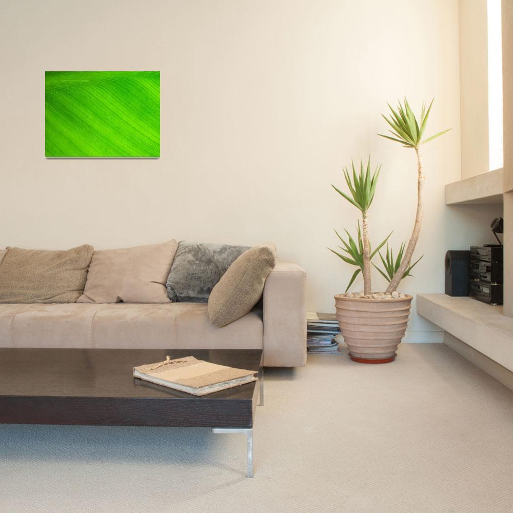 """Green Slide&quot  (2010) by bleij50"