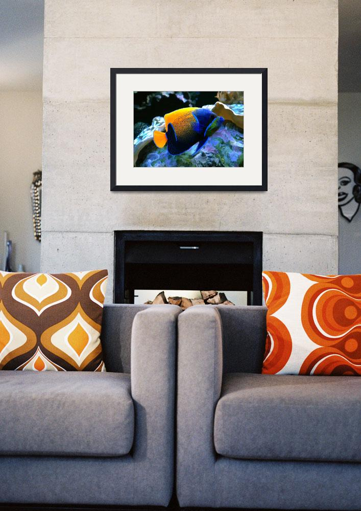"""""""Angelfish&quot  by Marilyn"""