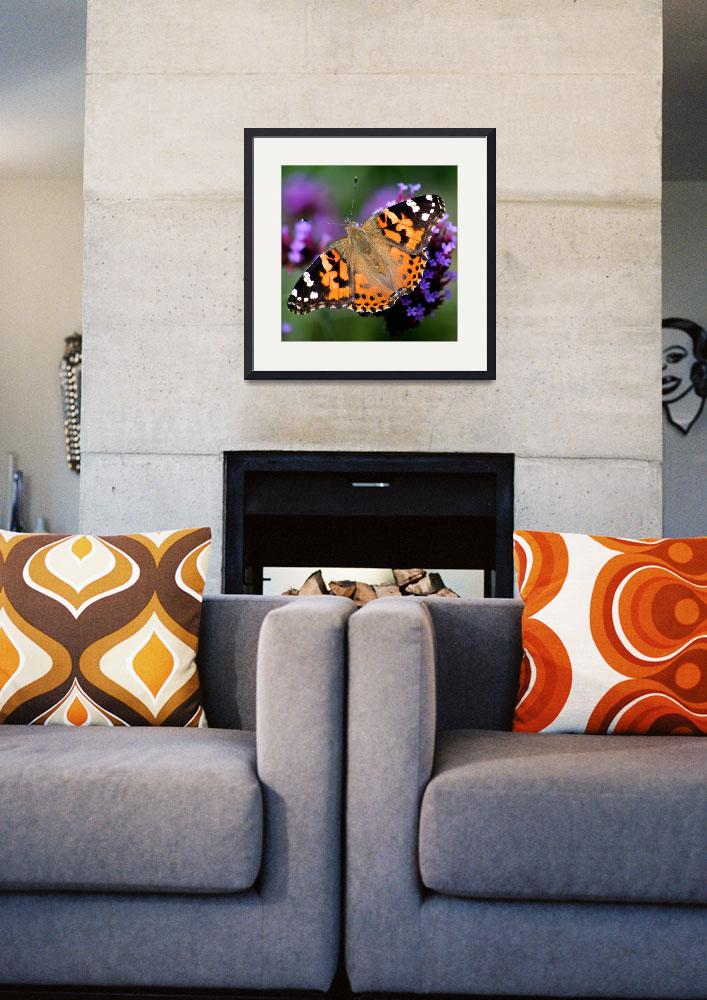 """""""Square American Painted Lady Butterfly""""  (2013) by KsWorldArt"""