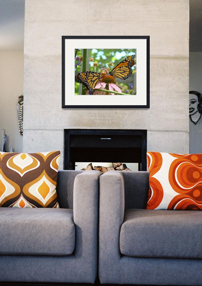 """Butterflies Monarch Butterfly nature art prints&quot  (2013) by BasleeTroutman"
