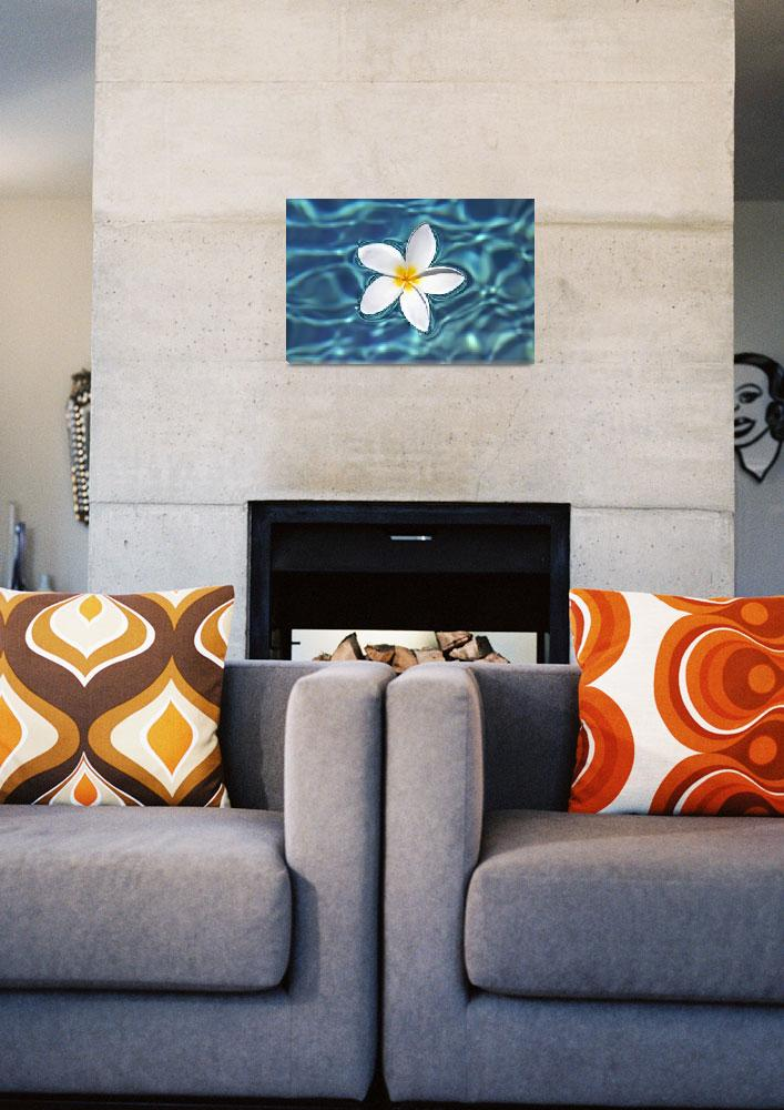 """Plumeria Flower Floating In Clear Blue Water&quot  by DesignPics"