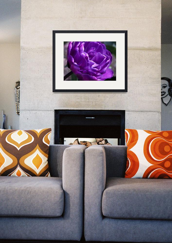 """""""Indulge in Amethyst&quot  (2008) by alisonwest"""