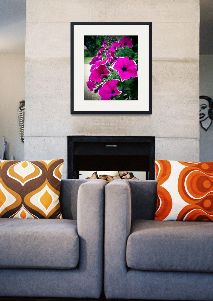 """""""Lovely Petunias""""  (2011) by rewards4life"""