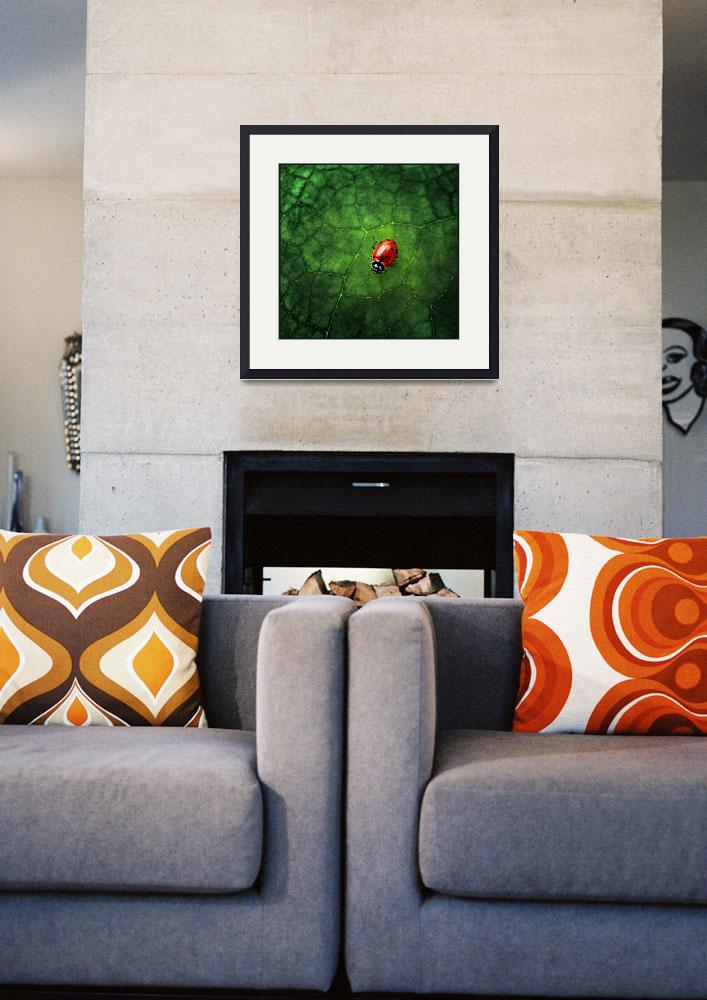 """""""Ladybug at Home&quot  (2007) by jody9"""