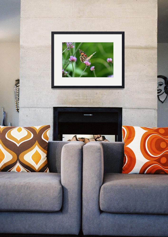 """""""American Painted Lady Butterfly&quot  (2012) by KsWorldArt"""