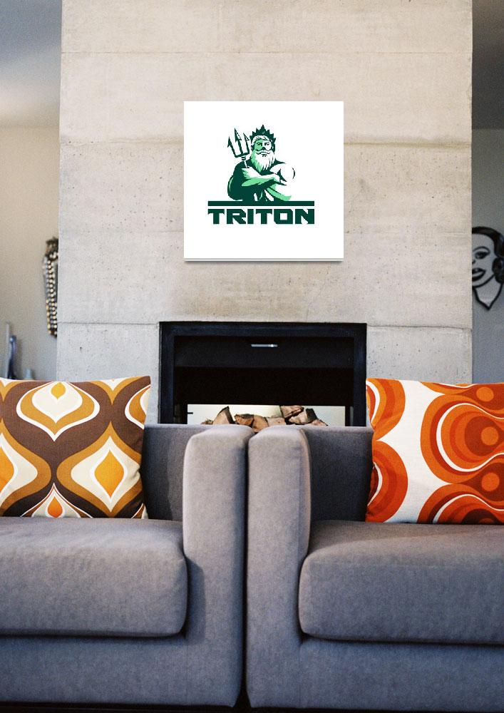 """Triton Arms Crossed Trident Front Retro&quot  (2016) by patrimonio"
