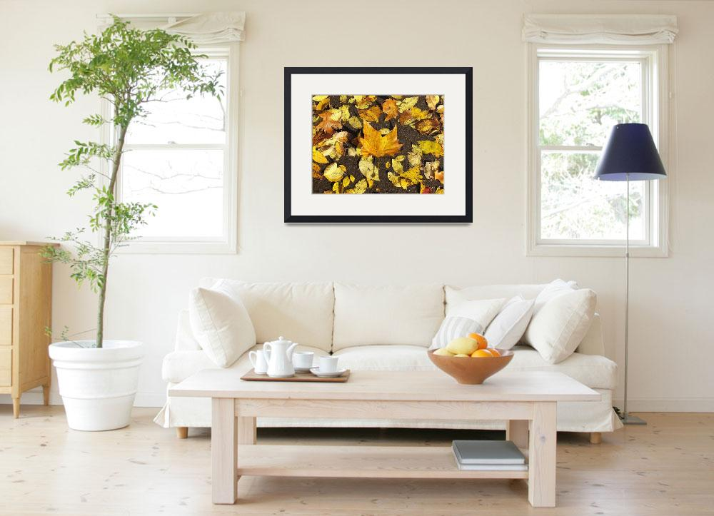 """""""Yellow Autumn leaves&quot  (2011) by biriart"""