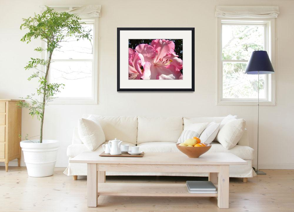 """""""Rhododendron Flower Beautiful Big Pink Rhodie&quot  (2010) by BasleeTroutman"""