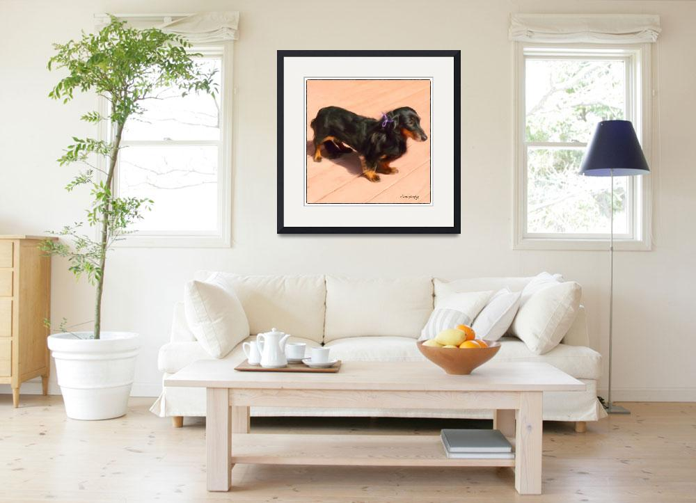 """""""DOLLED UP DACHSHUND&quot  (2012) by shaynaphotography"""