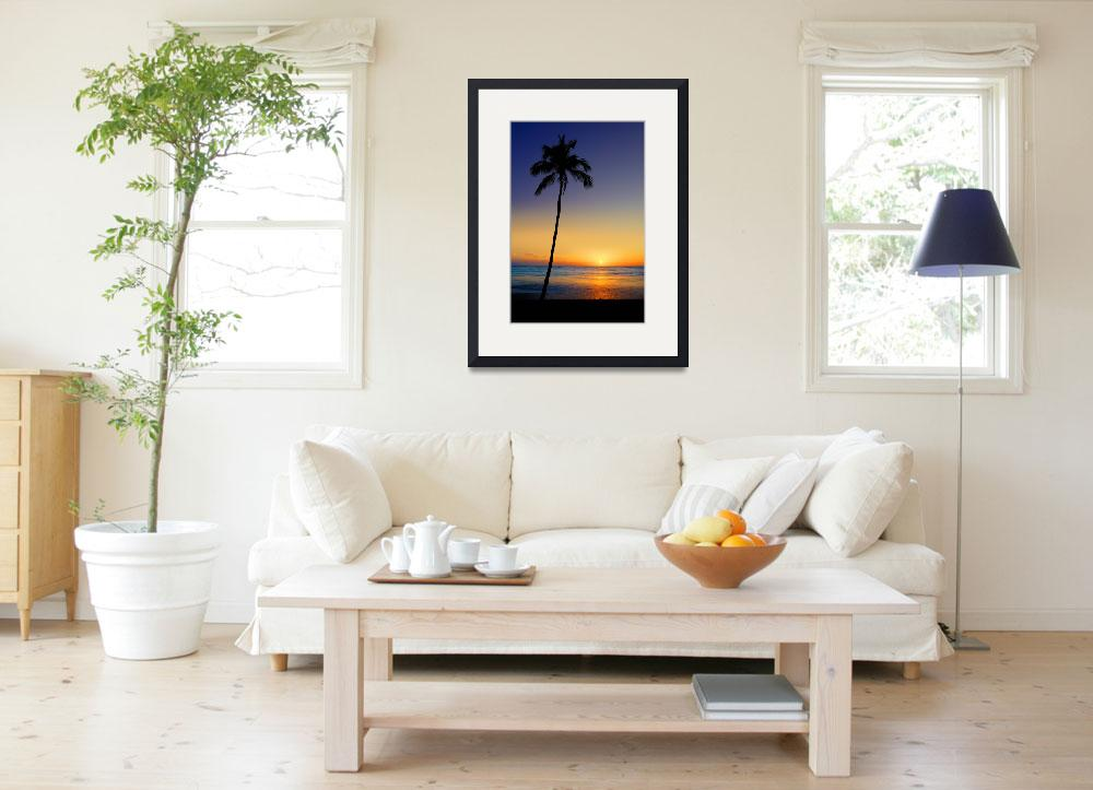 """Leaning Sun Palm&quot  (2009) by Surrealize"