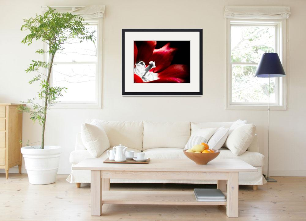 """""""Red Summer Flower 2""""  (2013) by NCCreations"""