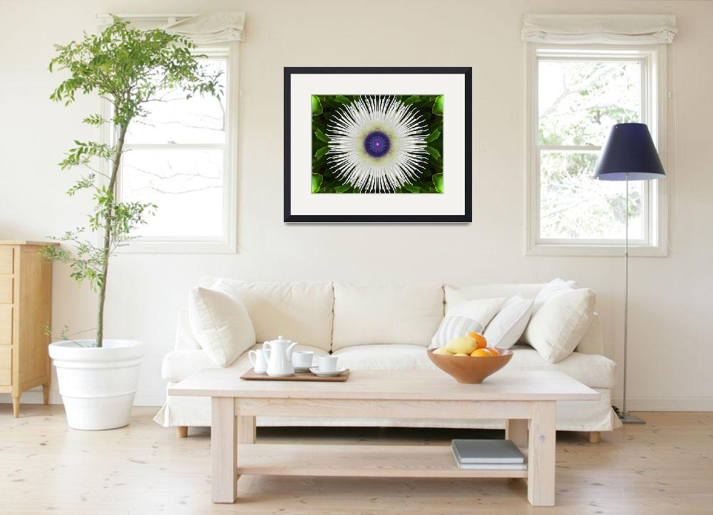 """""""White Passion Flower&quot  (2014) by SeaAngel12"""