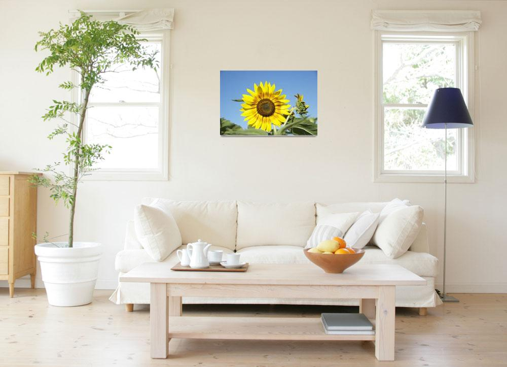 """""""Sunny Day&quot  (2009) by tricia"""