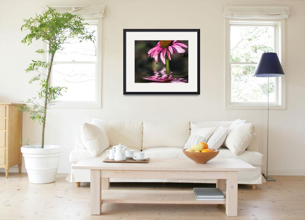 """""""Pink Cone Flower&quot  (2007) by tricia"""