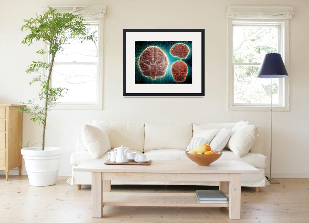 """""""Conceptual image of human brain at different angle&quot  by stocktrekimages"""