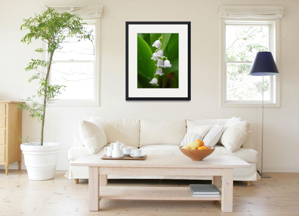 """""""Lily of the valley&quot  (2013) by vpicks"""